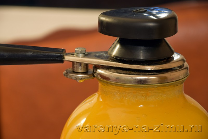 Тыквенный сок на зиму: фото 7