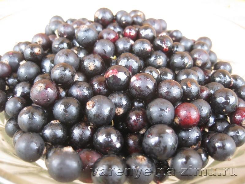 Желе из чёрной смородины без варки: фото 1