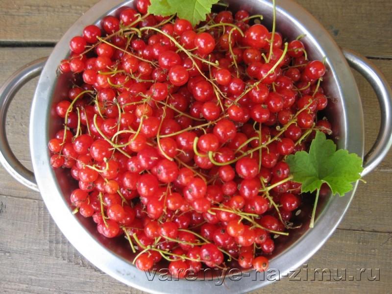 Желе из красной смородины без варки: фото 1